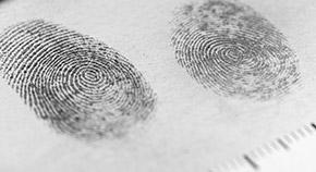 LLB 法律与犯罪学