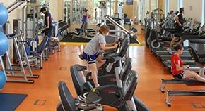BSc 健康与运动科学