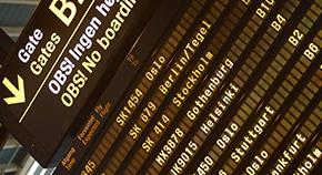 MA 国际旅游发展